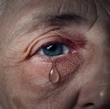 family elder abuse, financial elder abuse, elder abuse