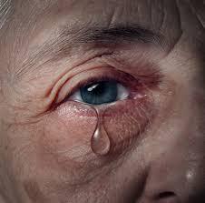 family elder abuse, financial elder abuse, elder abuse
