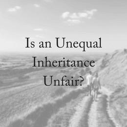 Is an Uneven Inheritance Unfair?